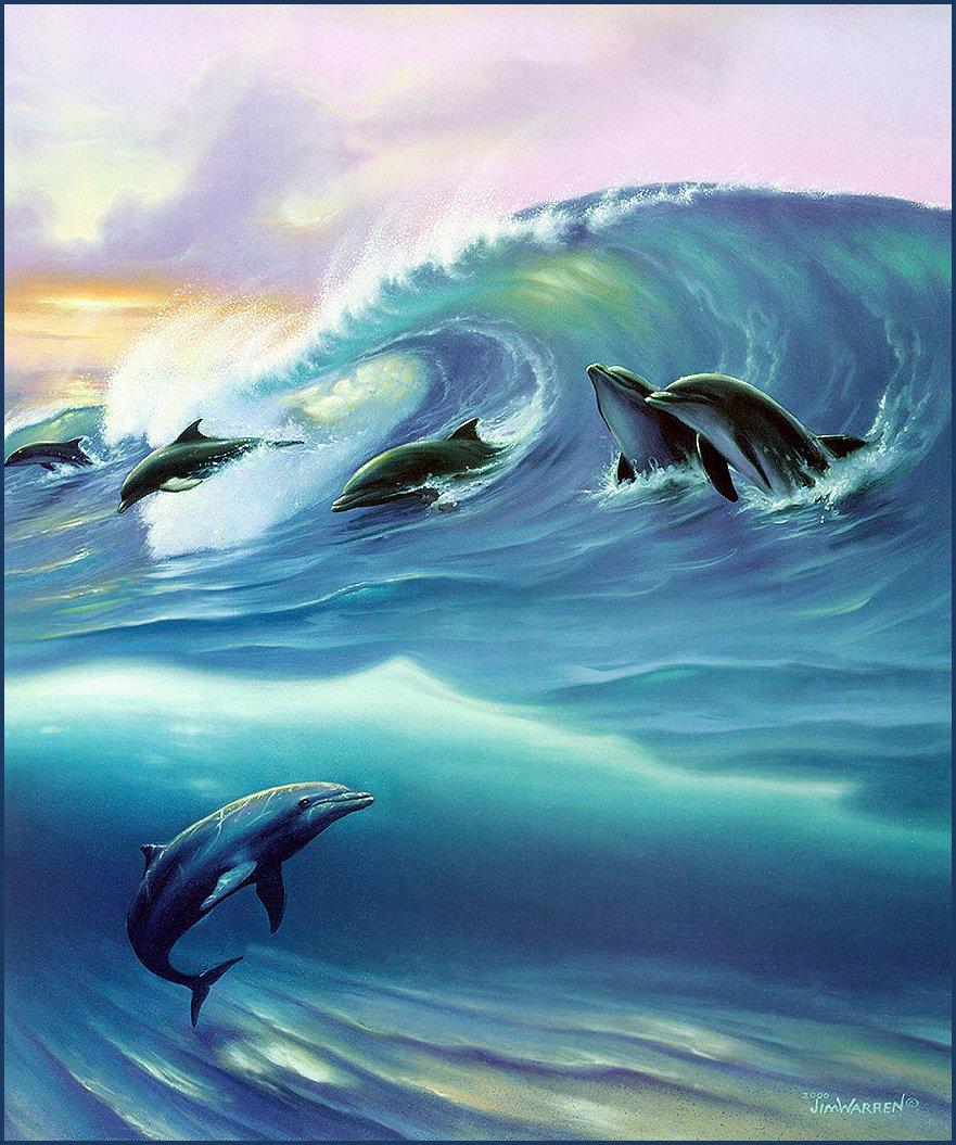 Jim_Warren_Surfin_Dolphins.jpg